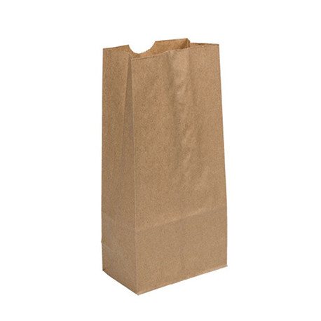 Brown Lunch Bags 40 Ct Schoolbox Kits