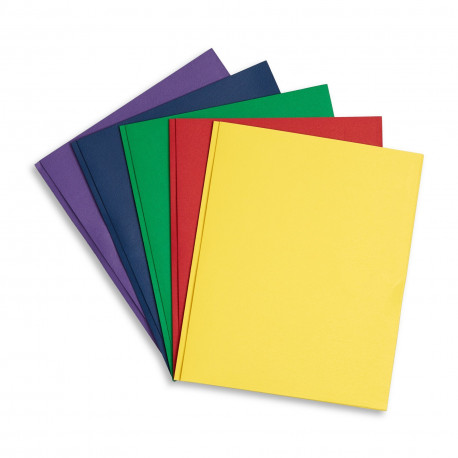 Two Pocket folder with prongs